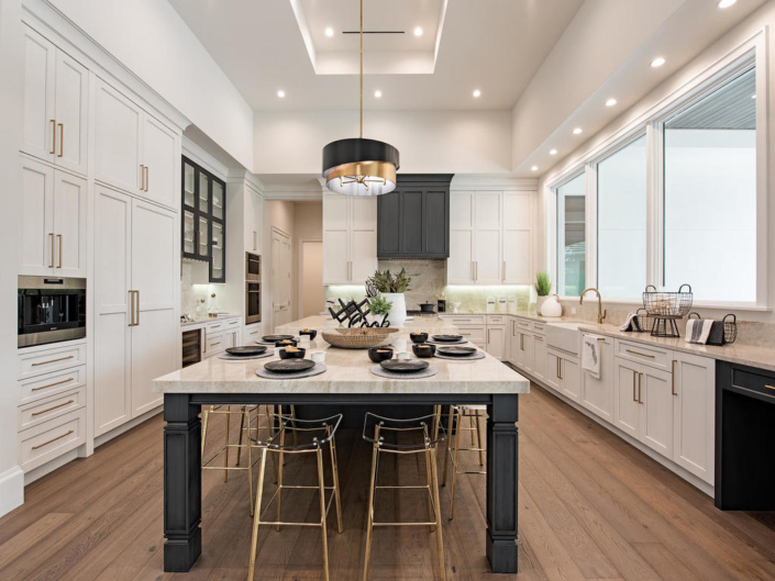 contemporary kitchen - cabinetry